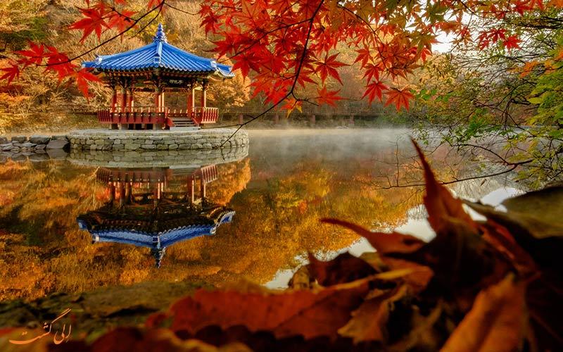 زیبایی هایی سفر در پاییز