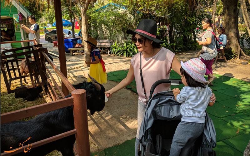 زمین بازی کودکان باغ وحش دوزیت