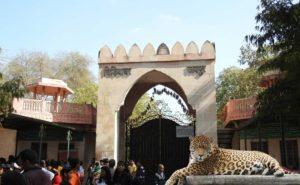 باغ وحش جیپور در هند