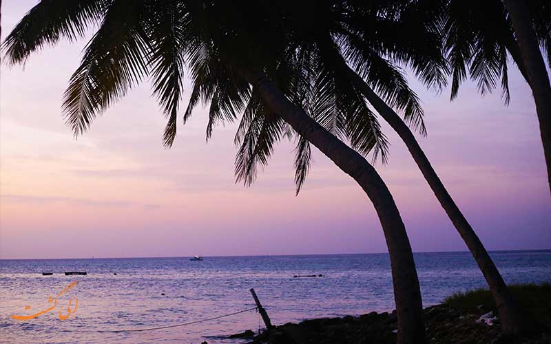 تولوسدو، روح جزایر کارایب