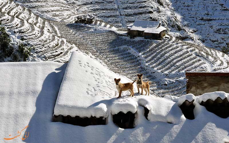 بهترین نقاط برای سفر در زمستان