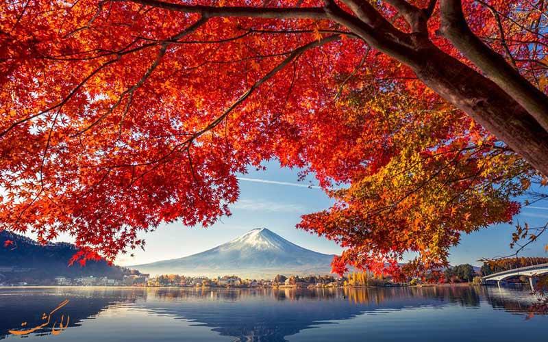 نمایی از کوه فوجی در پاییز