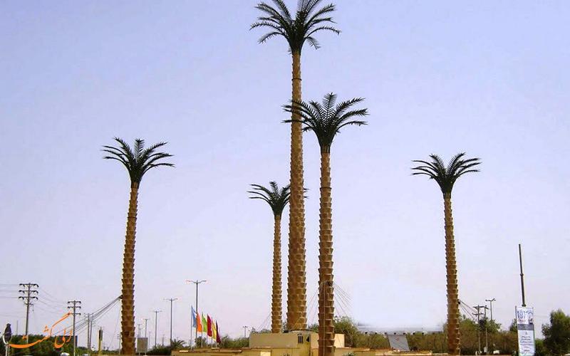 تصویری از نخل های شهر اهواز