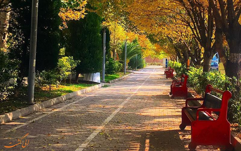 پارک هنرمندان تهران، پاتوق مورد علاقه جوانان