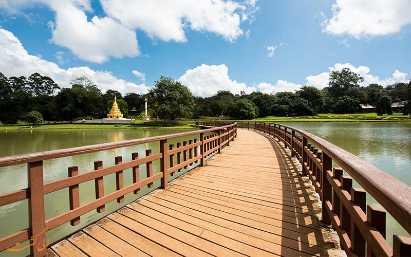 پل چوبی در میان دریاچه باغ گیاه شناسی میانمار
