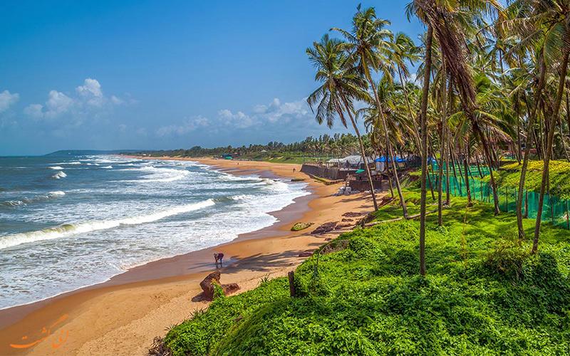 ساحل زیبای سالست (Salcete) در آسمان صاف و درختان سبز