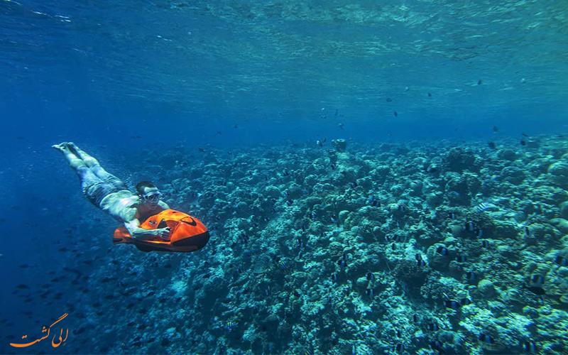 شنای گردشگری در اعماق اقیانوس هند جزایر مالدیو