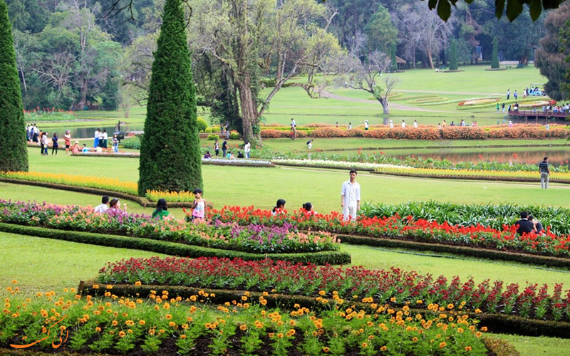 حضور گردشگران در میان گل ها رنگارنگ باغ میانمار