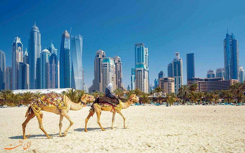 منظره ای از صحرا در امتداد آسمان خراش های دبی