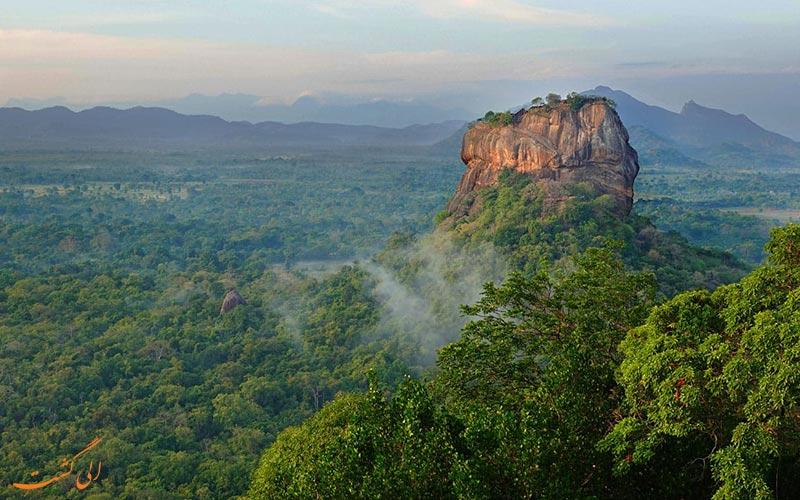تصویری از جنگل های سریلانکا