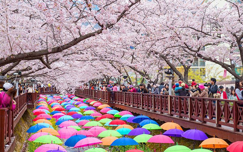 جاذبه های توریستی کره جنوبی
