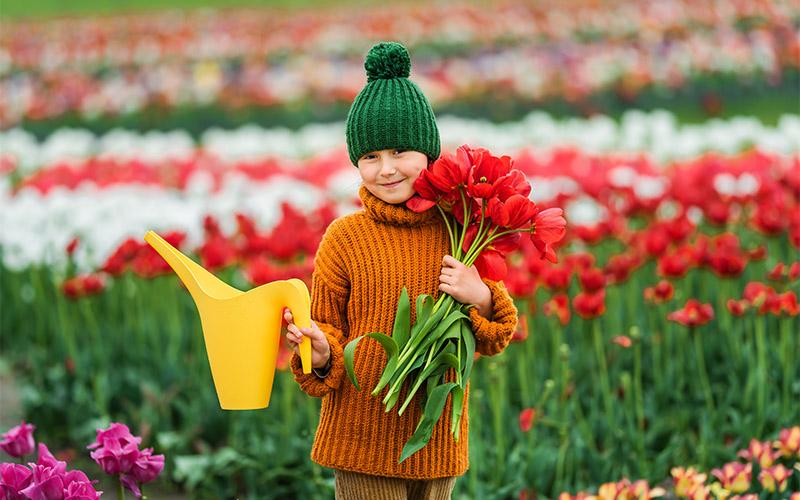 مزارع گل لاله هلند