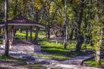 بهترین مسیرهای جنگل نوردی در ایران