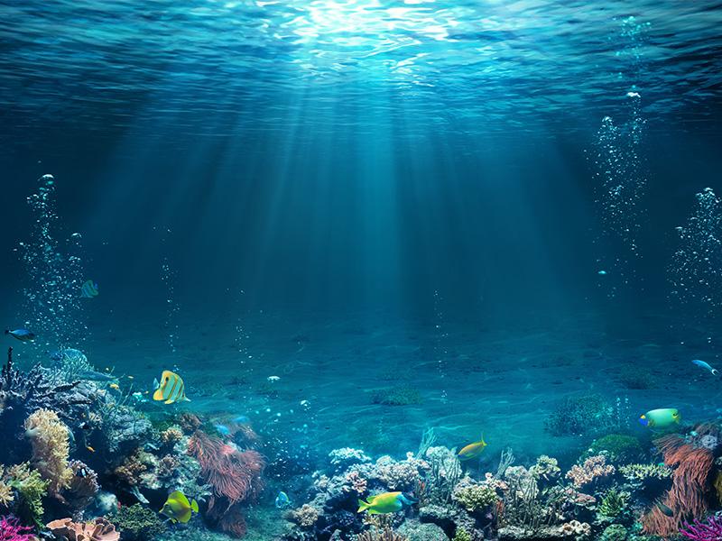 معرفی اقیانوس های دنیا و راه رسیدن به نزدیکترین ساحل آن ها