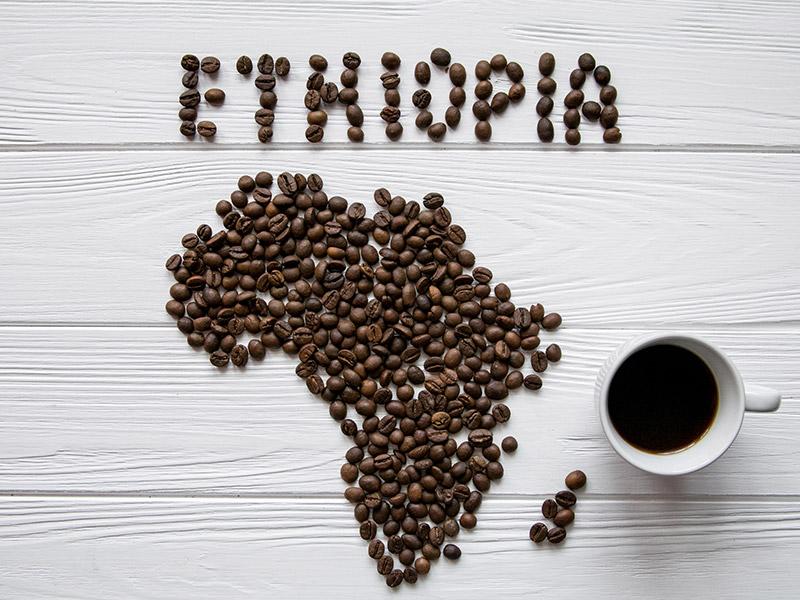 تاریخچه کشف قهوه